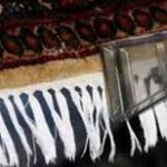 Cotton fringe cleaning on an oriental wool rug