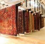 Oriental and wool rugs suspended from drying racks