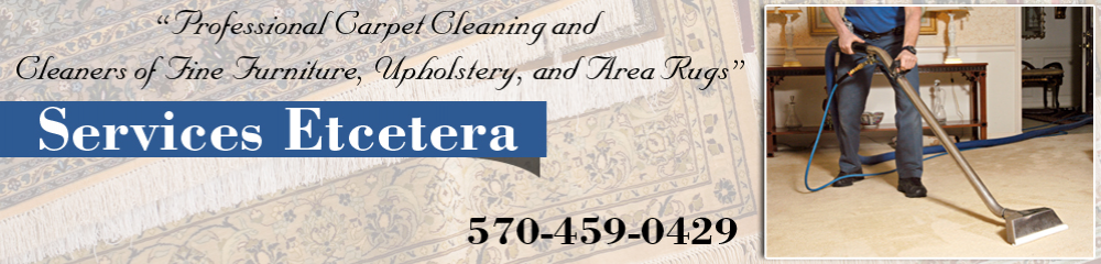 Carpet Cleaning Berwick PA, Mountain Top PA and Hazleton PA