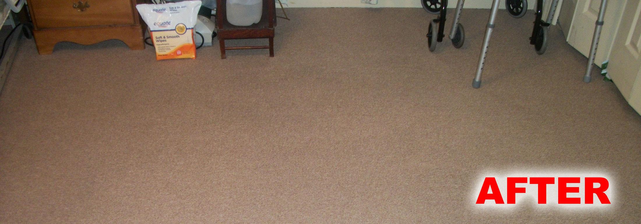 Floor Carpet Great Home Design